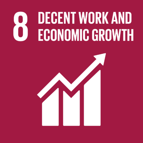 UN 8 GlobalGoals Decent Work and Economic Growth compressed