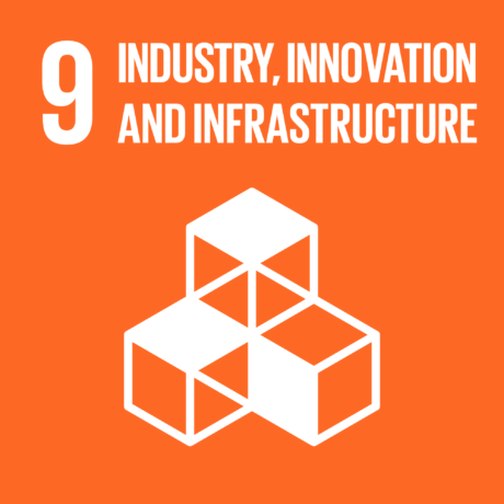 UN 9 GlobalGoals Industry Innovation and Infrastructure compressed