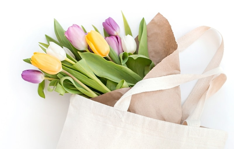 Free Places To Promote Your Blog Posts Header Of Colorful Tulips And White Tote Bag