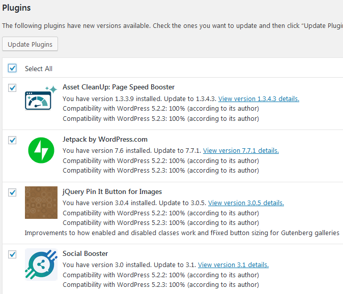 The WordPress Updates Page With A List Of Plugins Selected For Updating