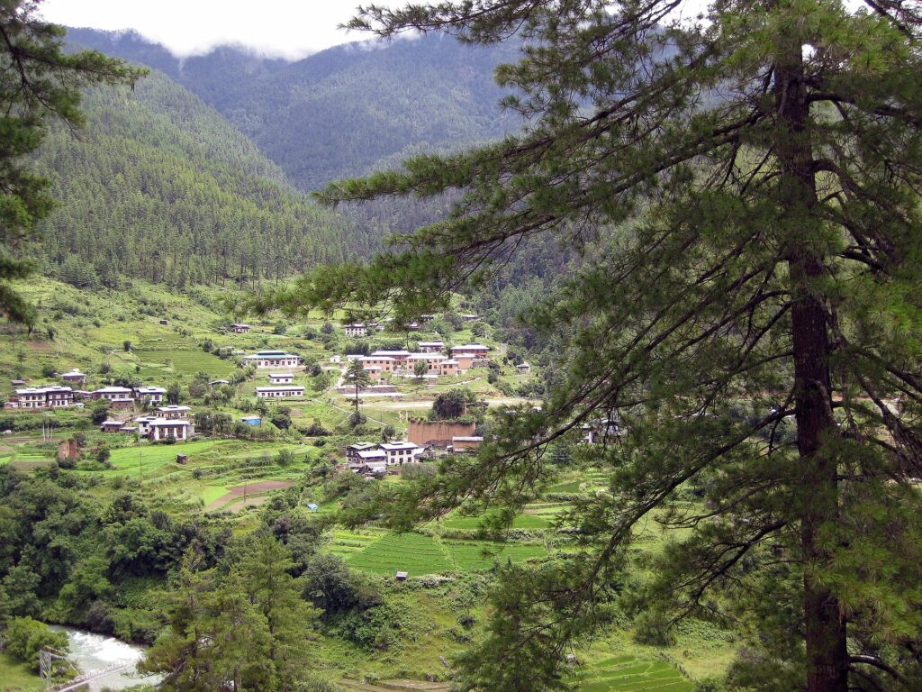 Bhutan Is Carbon Negative NOW. Why Is It The Only Country?