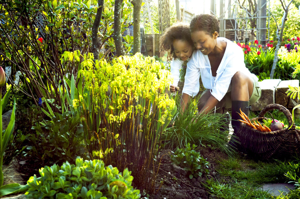 Daily Gardening Is As Good For Wellbeing As Regular Intense Exercise