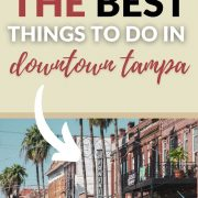 best things to do in downtown tampa