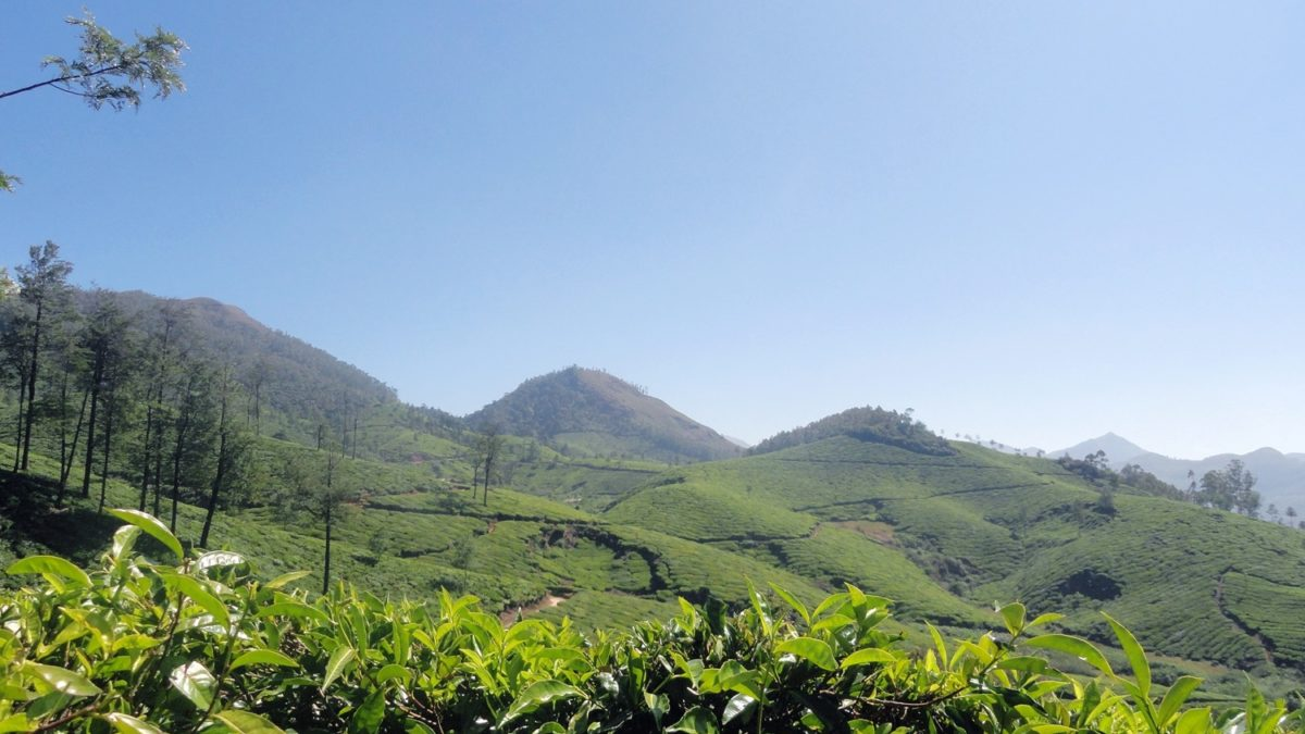 The Misty Mountains 9