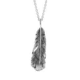 Huia Pendant and Chain Evolve The Huia Feather was regarded as a token of friendship, honour and respect_0