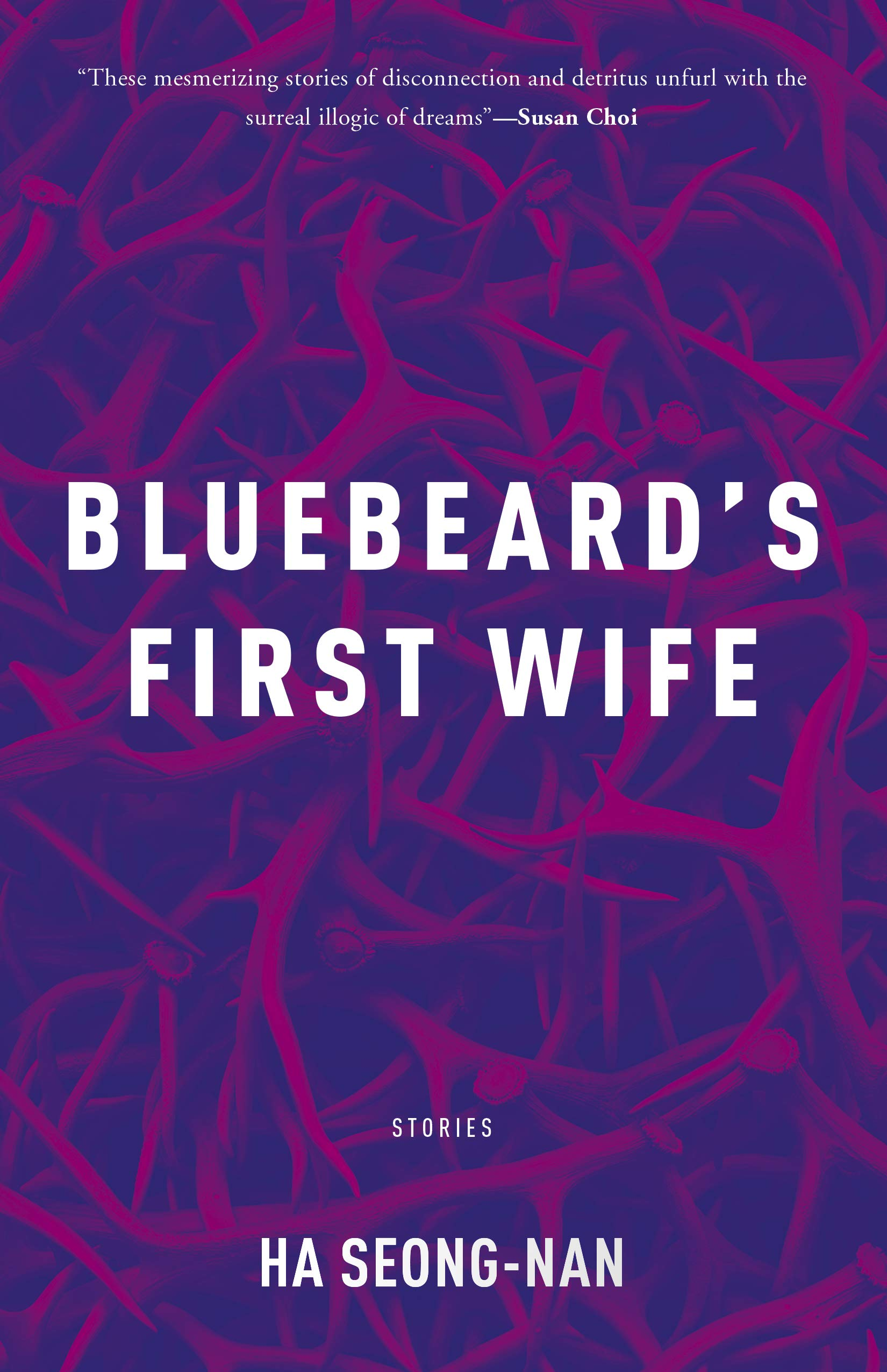 book cover for bluebeard's first wife