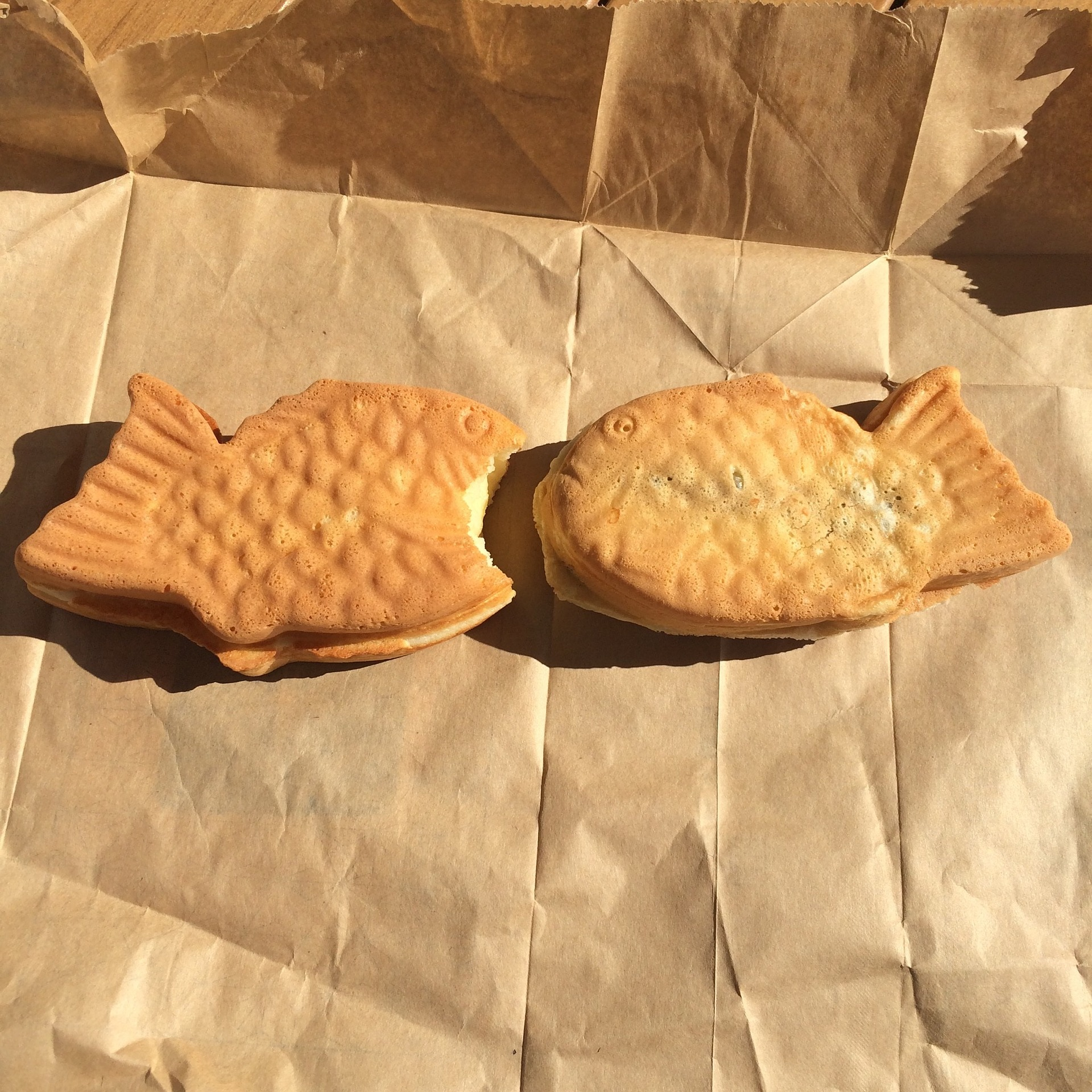 Two bungeoppang: hot pastries shaped like fish and filled with a sweet red bean paste.