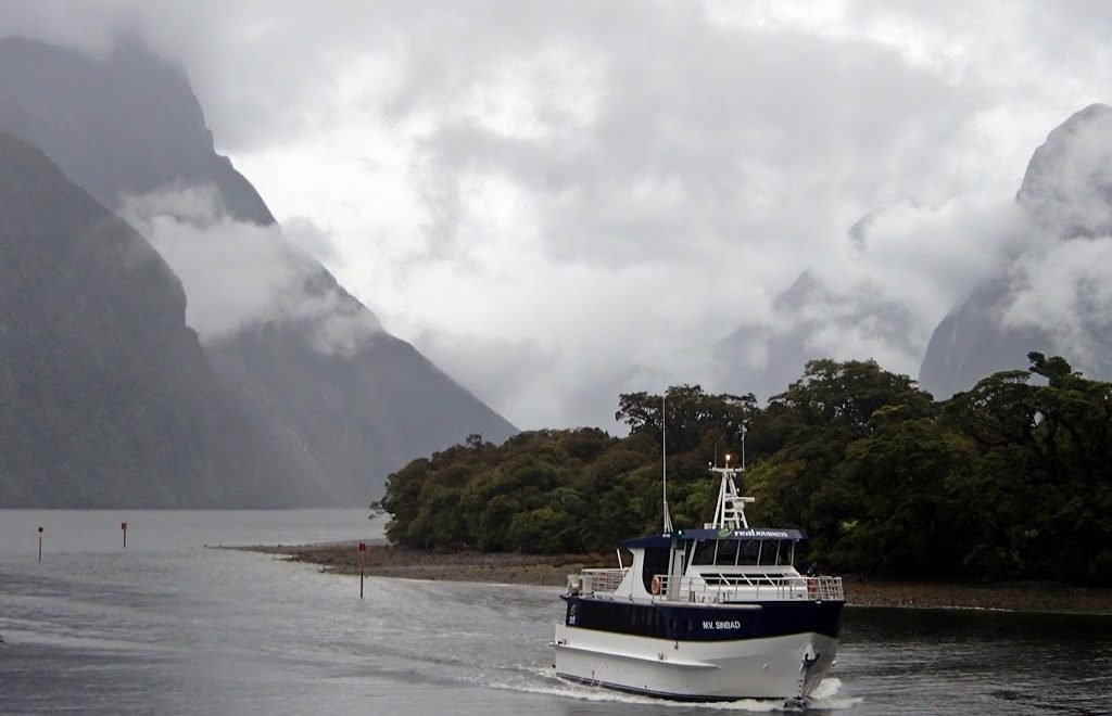 cruising milford sound road trip new zealand south island