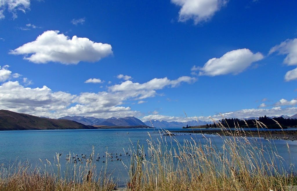 Tekapo road trip new zealand south island