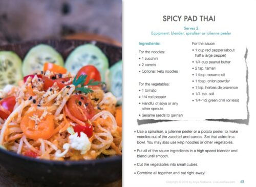 How to be a raw foodie book by Anya Andreeva, pad thai recipe
