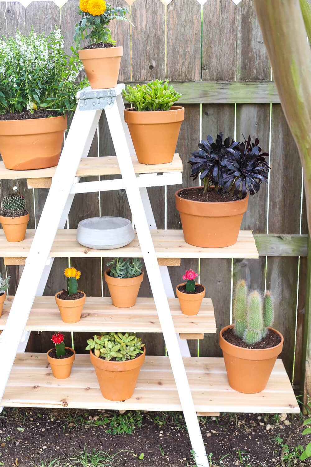 Easy ladder plant stand