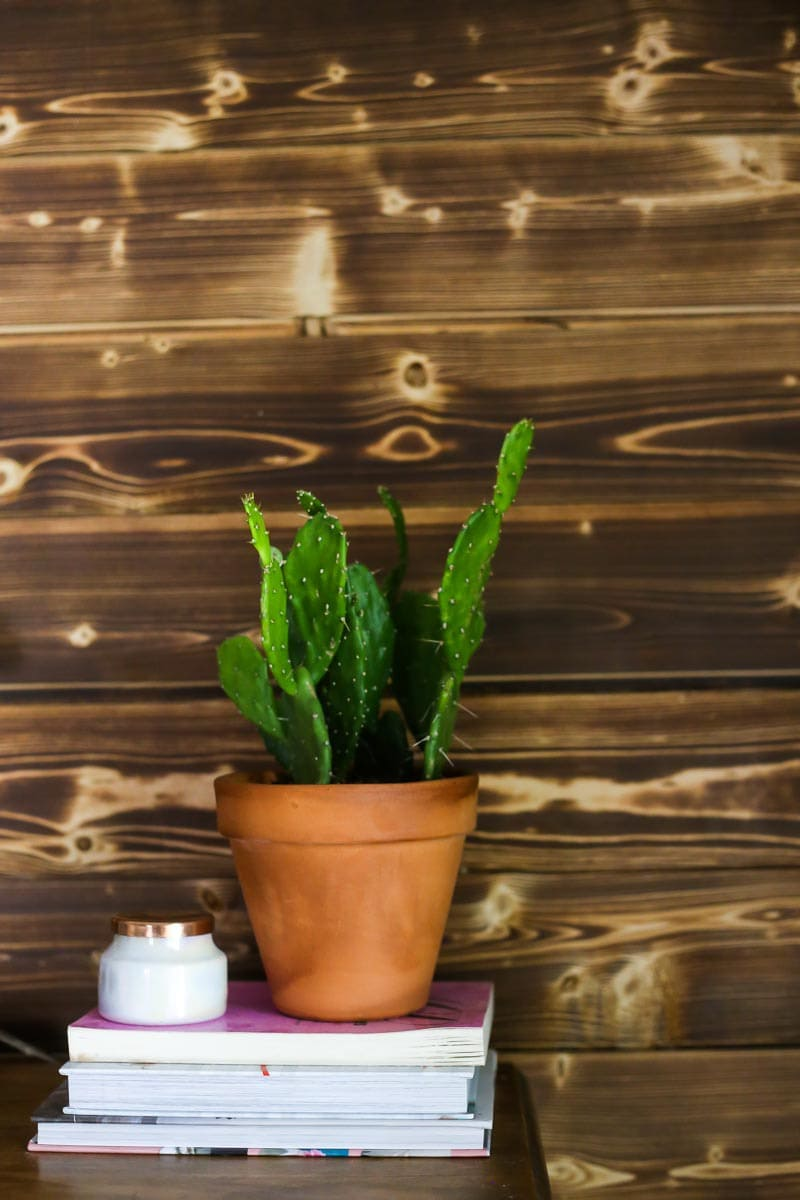 A gorgeous DIY wood accent wall