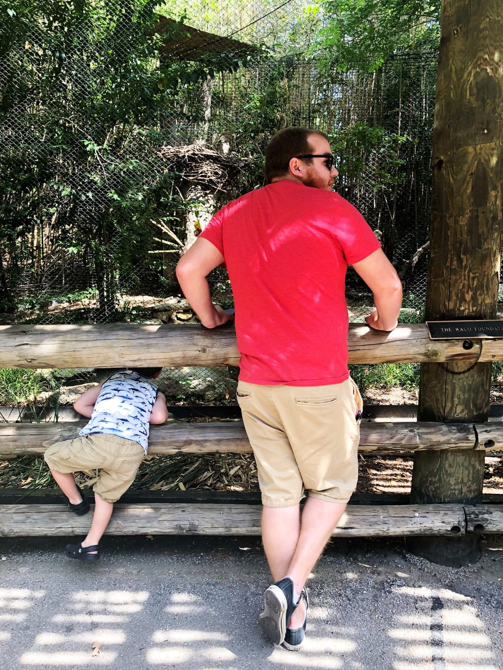 Things to do in Waco - Cameron Park Zoo