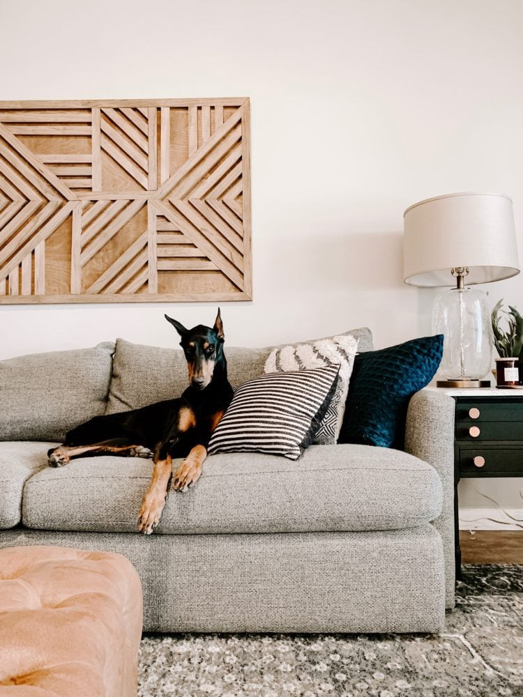 living room before - gray Crate & Barrel sofa with a doberman laying on it