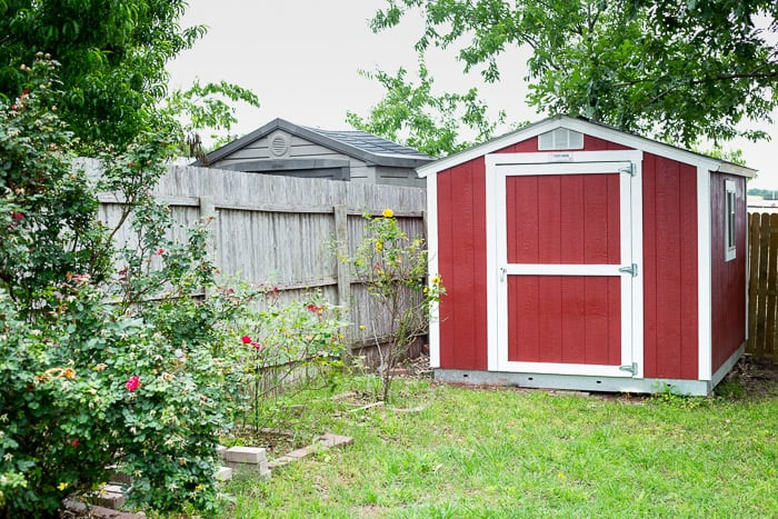 A small red shed in a backyard