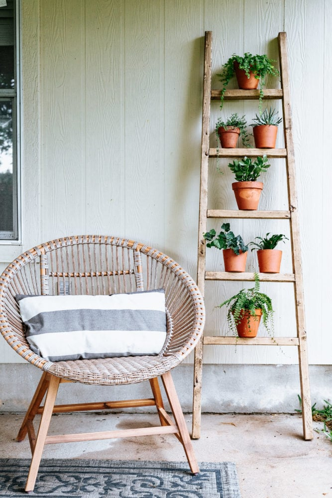 tall blanket ladder leaning against house with plants on rungs