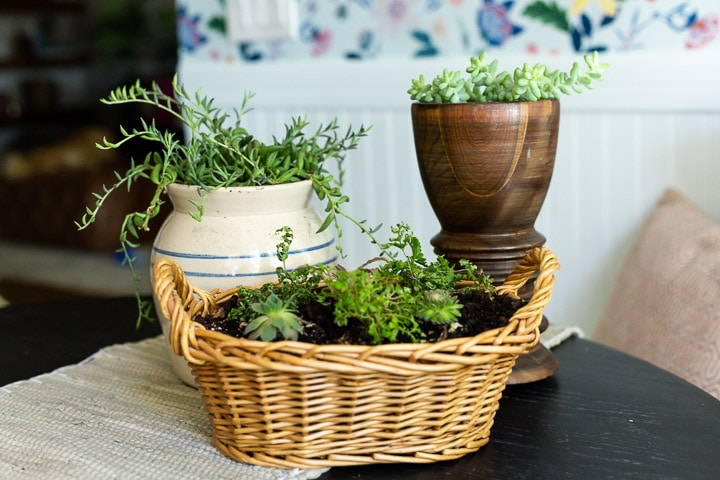 three vases and baskets with plants planted in them