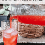 a pitcher of a cocktail next to a full glass with text overlay - copycat recipe: fun ship special