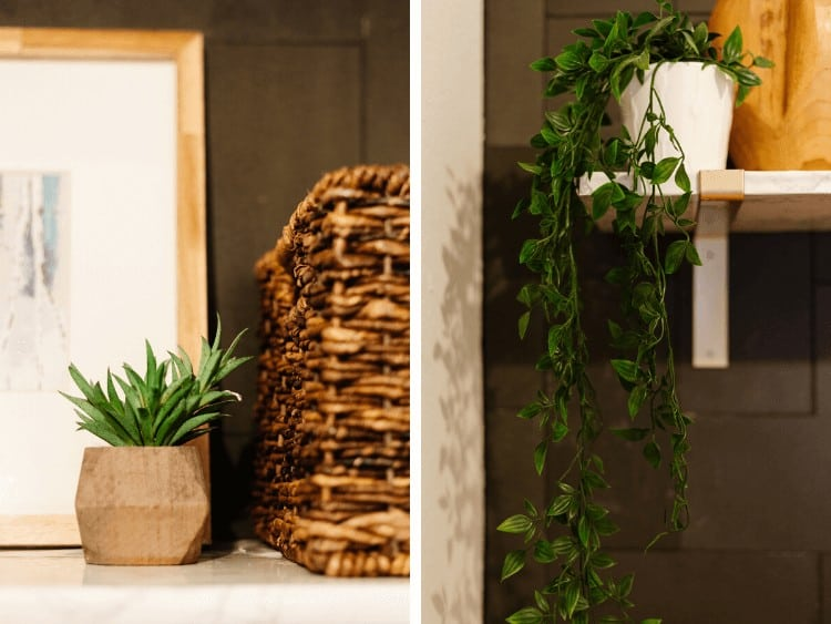 close up of faux plants in laundry room