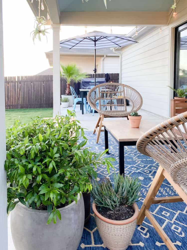 small and cozy plant-filled patio