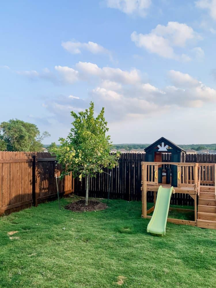 a tree and playhouse in a small backyard