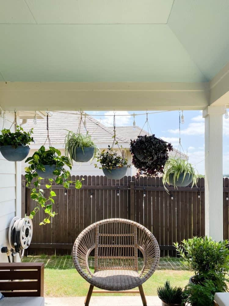 back patio with six hanging plants