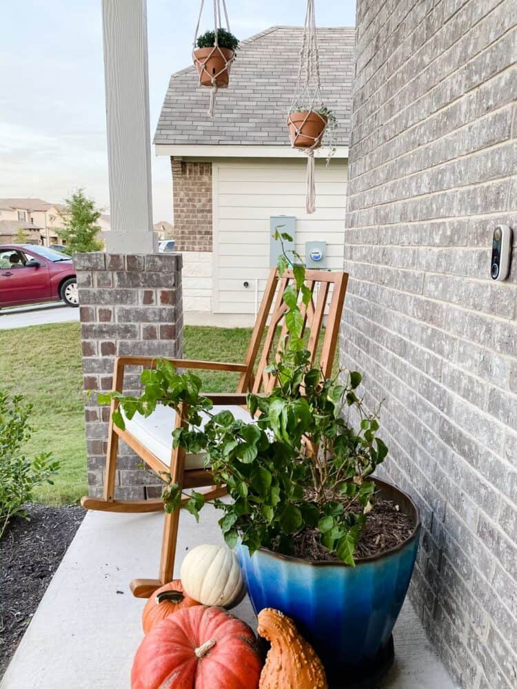 front porch with pumpkins and fall plants