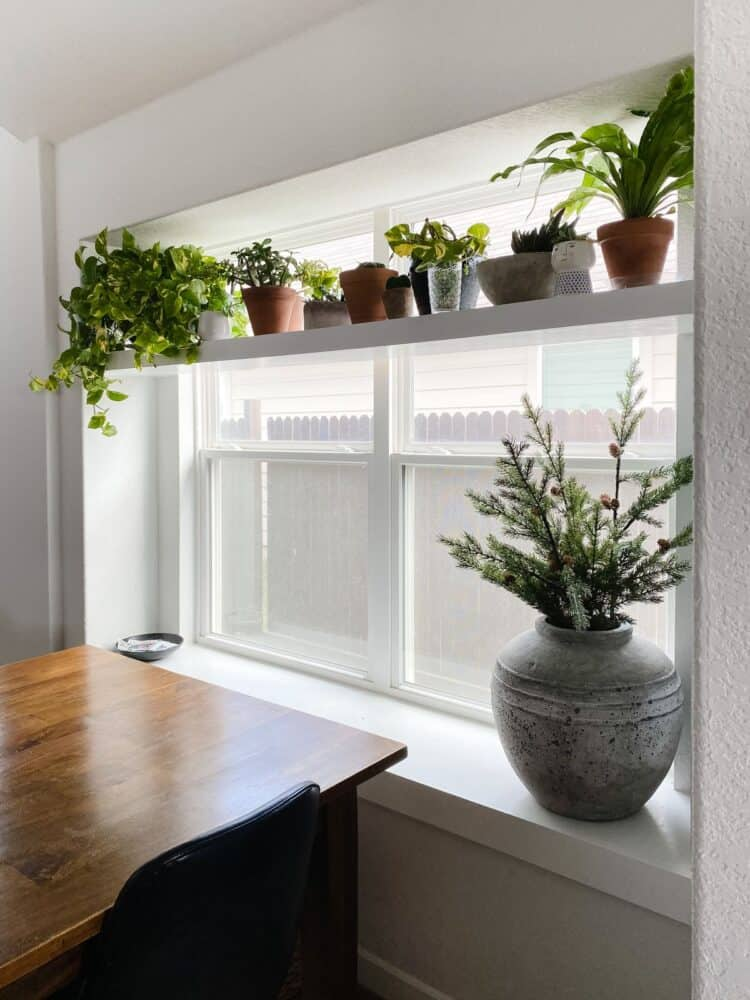 close up view of window with DIY plant shelf