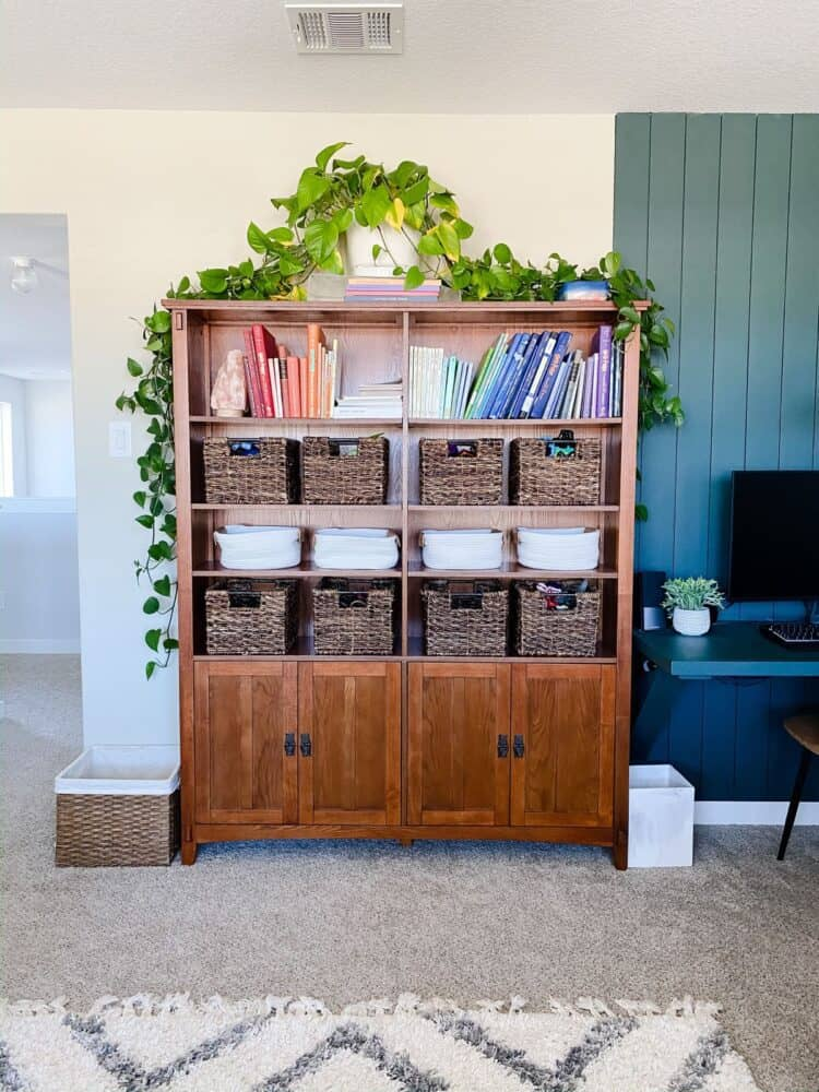 play room with shelf storage