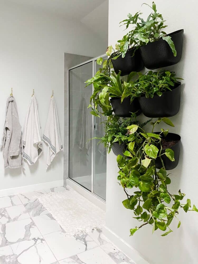 Bathroom with a living wall made from WallyGro planters