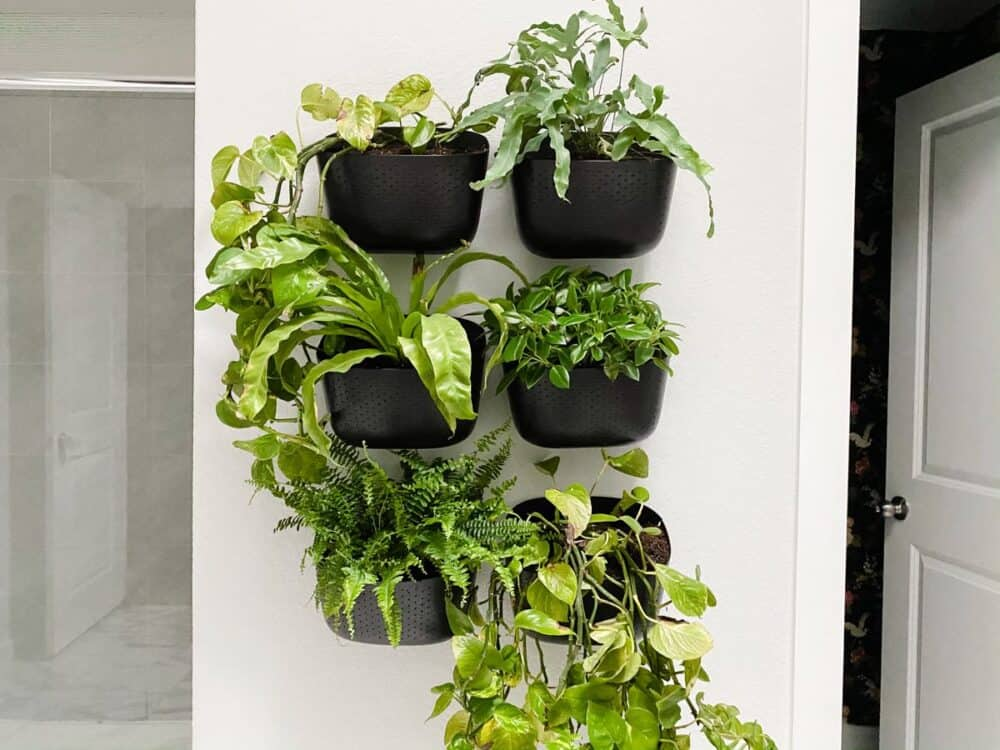 a bathroom wall with WallyGro Eco Planters in a grid
