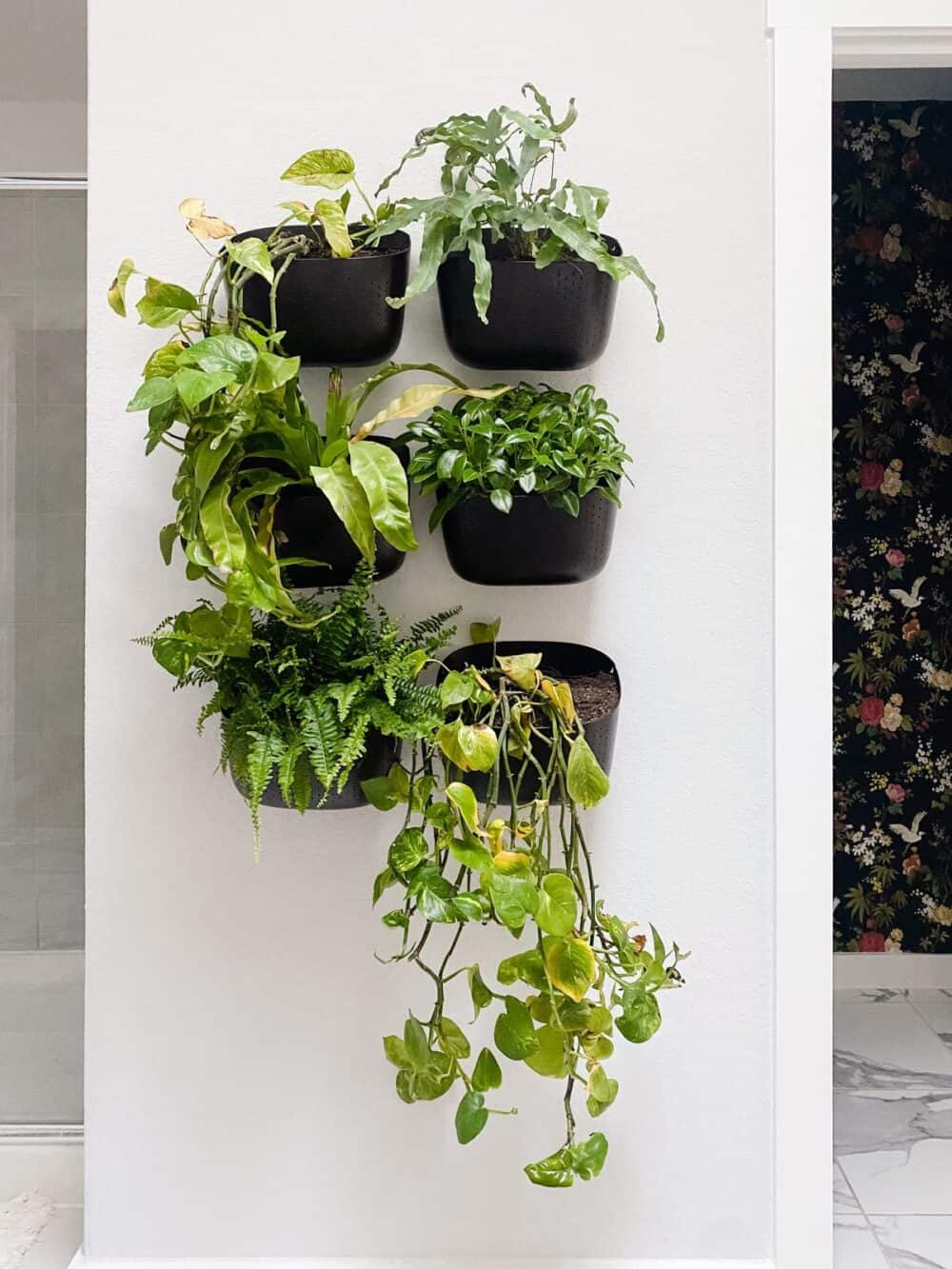 bathroom with living plant wall