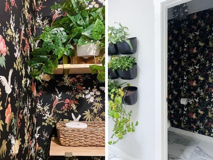 side by side images of bathroom with black floral water closet