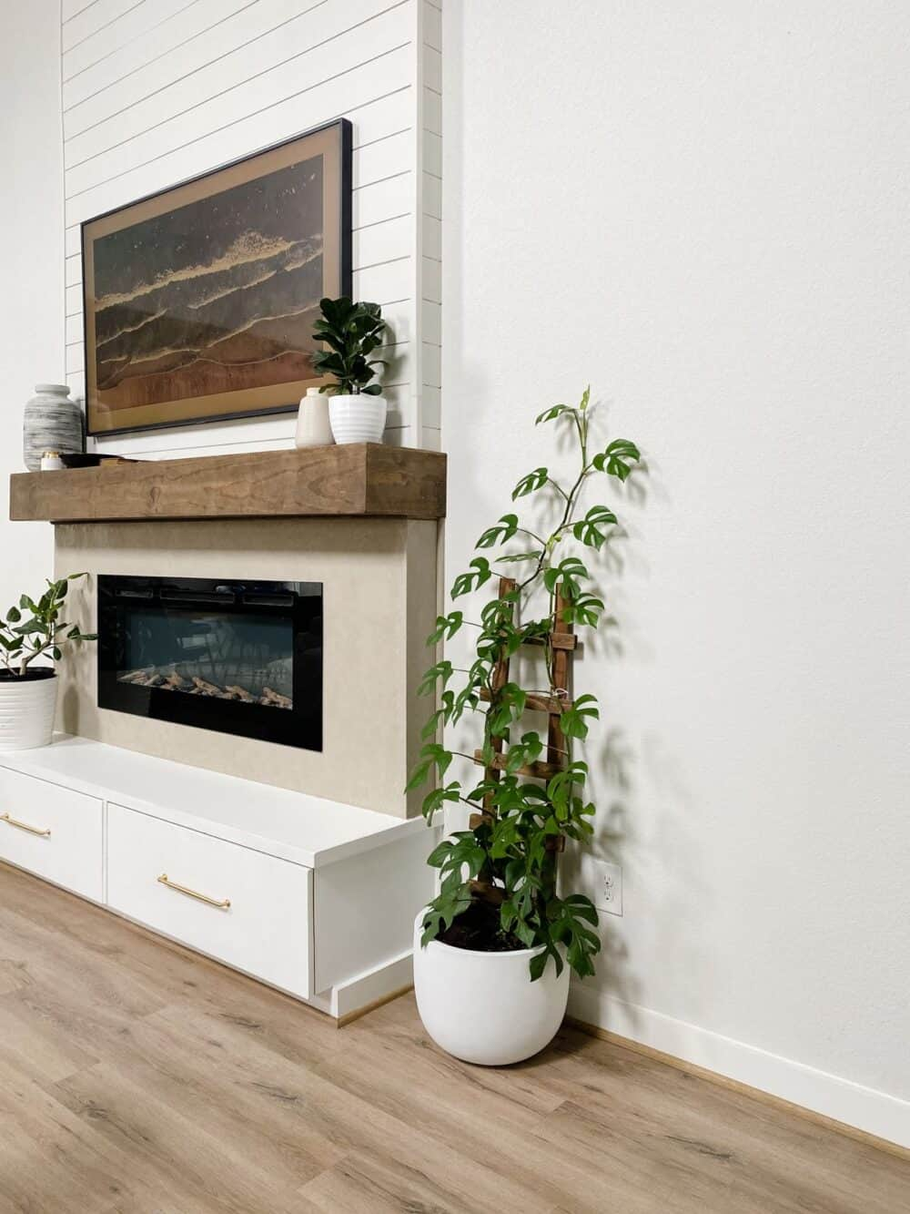 A tall fireplace with a Rhaphidophora Tetrasperma sitting next to it