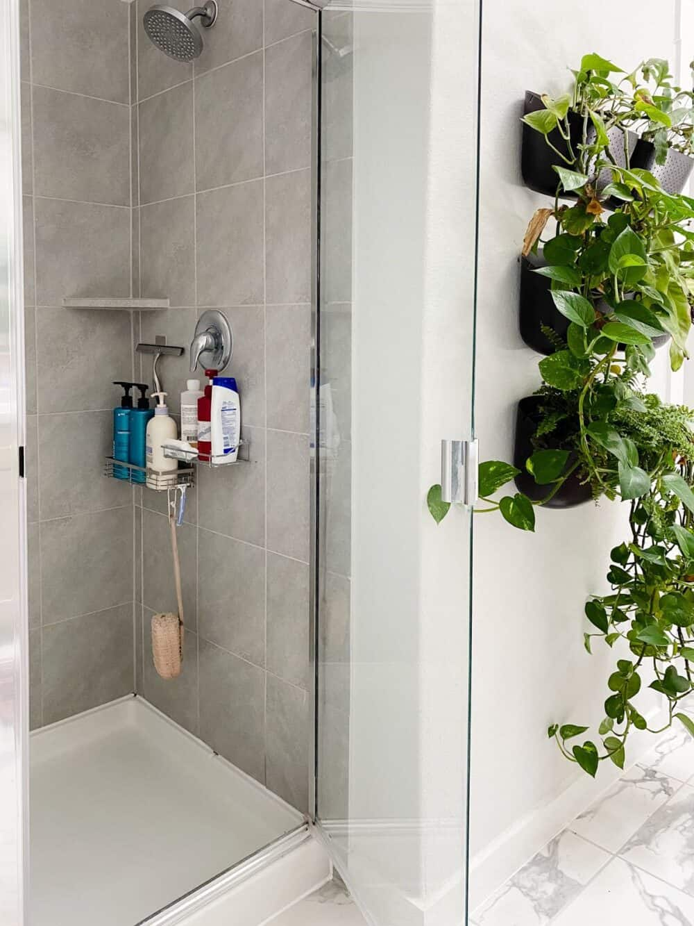 Shower with shelves for toiletries