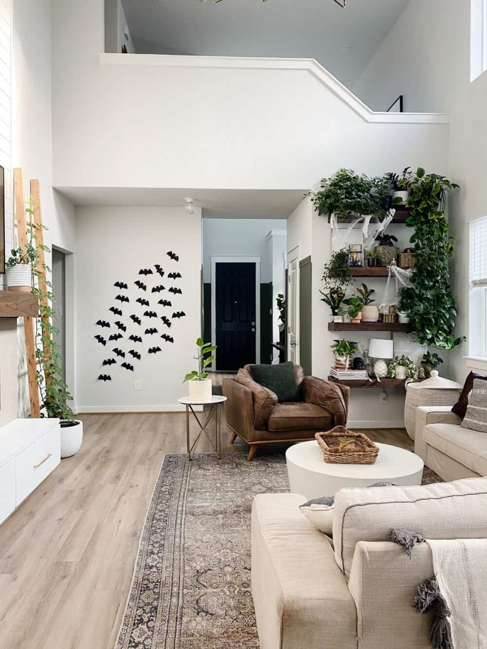 A cozy and neutral living room with Halloween bat decor and plant shelves decorated for Halloween