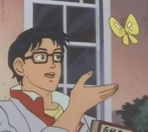 is this butterfly
