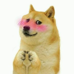 Doge Wholesome