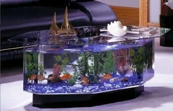 680 Stretched Octagon Aquarium Coffee Table2