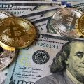 Top Cryptocurrency Business Accounts That You Might Want to Know