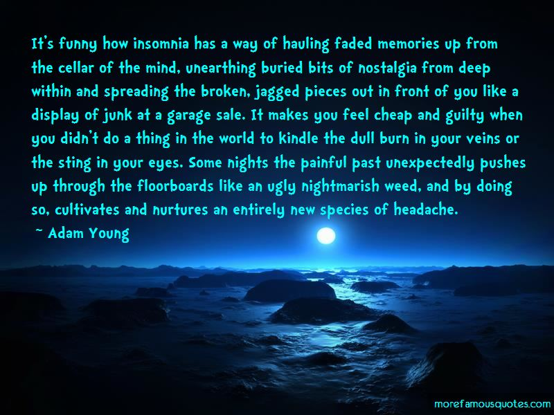 Quotes About Insomnia Funny Top 3 Insomnia Funny Quotes From Famous Authors