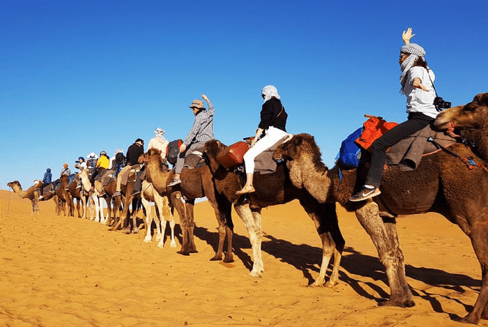 12-Day Trip from Marrakech