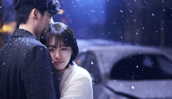 Assistir While You Were Sleeping Legendado Online Grátis