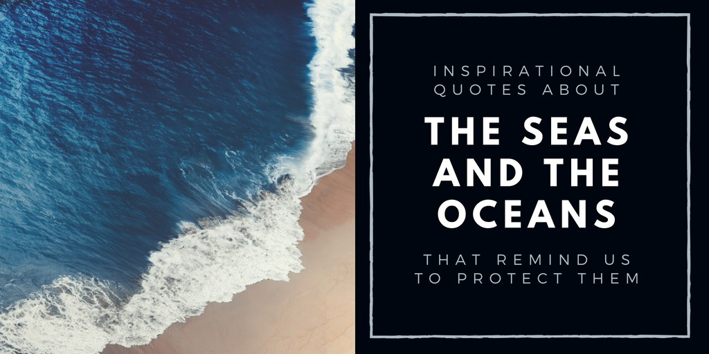 Quotes About The Ocean 5