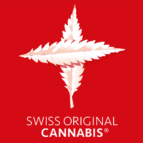 Swiss Original Cannabis