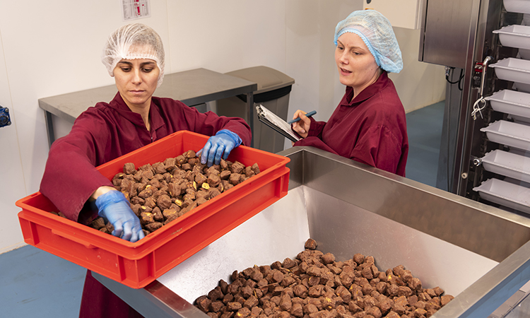 Hames chocolate on the production line
