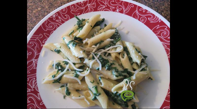 Pasta In White Sauce With Spinach – pachakam.com