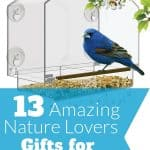 Nature Gifts for Grandma