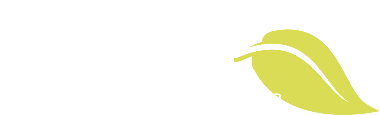 Renu MediSpa Idaho's Most Innovative Medical Spa Logo