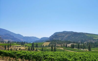 Things to do in Okanagan Falls British Columbia